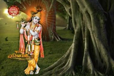 નંદ ઘેર આનંદ ભયો, જય કનૈયા લાલકી, હર્ષોલ્લાસ સાથે જન્માષ્ટમીની ઉજવણી